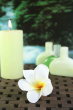 Aromatherapy Oil Bottles With Frangipani Flowers And Rainforest Background Photo